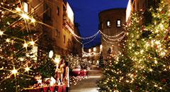 年に一度の特別な日<br />2014クリスマス