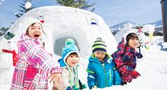 家族旅行にぴったりな<br />冬のリゾート