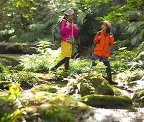 冬のジャングル女子旅