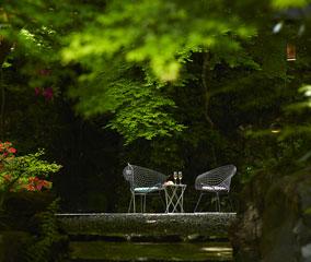 【星のや 京都】新緑のふるまいカクテル