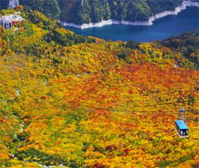 立山黒部の紅葉見頃は9月から3か月