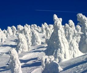 極寒の青森 冬限定の景色へご案内