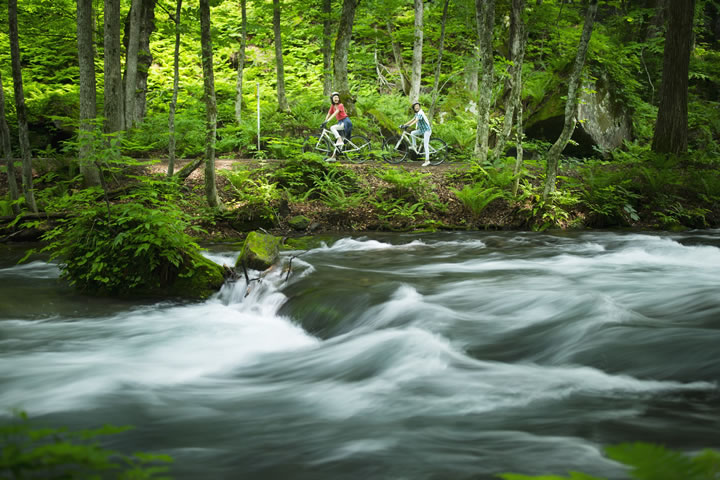 新緑の奥入瀬渓流をポタリング