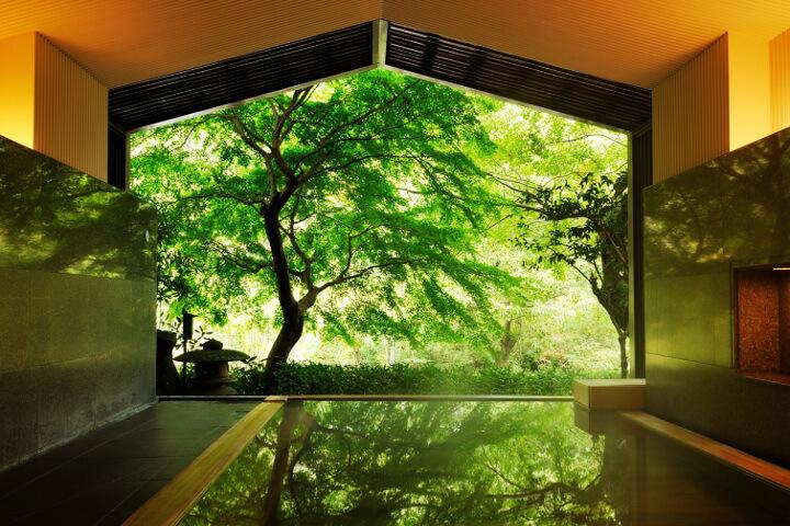 風景画のような露天風呂