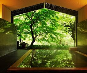 新緑が美しい界 箱根の半露天風呂