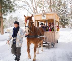 冬期限定「ストーブ馬車」で公園散歩