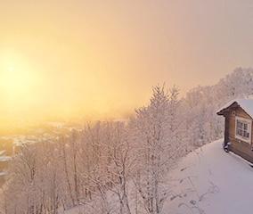 氷点下が生み出す絶景「霧氷テラス」