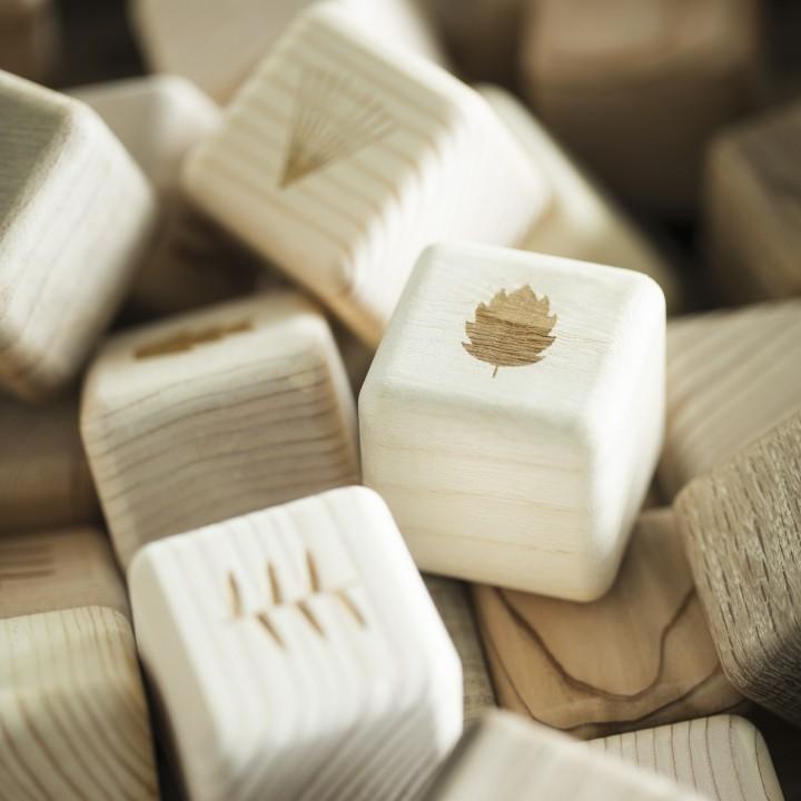 【リゾナーレ熱海】木のブロック2