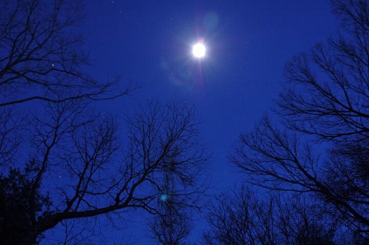 【星のや軽井沢】月光ストレッチ (720x479)