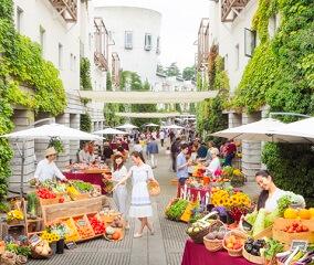 彩り豊かな野菜が、回廊を賑やかに彩る