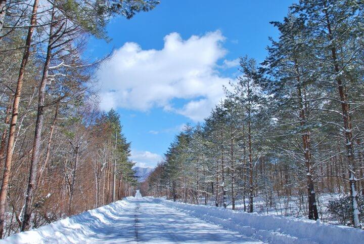 【星のや軽井沢】冬の道 (720x482)