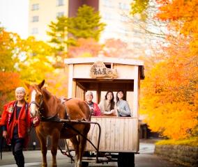 「紅葉りんご馬車」で公園散歩