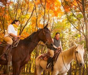 馬の町で楽しむ紅葉狩り