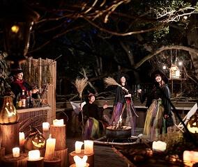「魔女のハロウィンナイト」を初開催