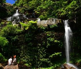 西表島ジャングル散策ツアー