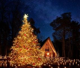 軽井沢で過ごす聖なる森のクリスマス