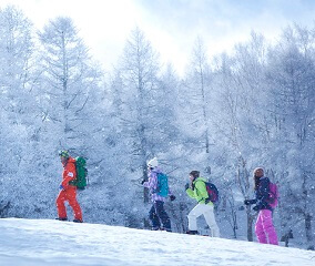 カスタムメイドの雪山アクティビティ