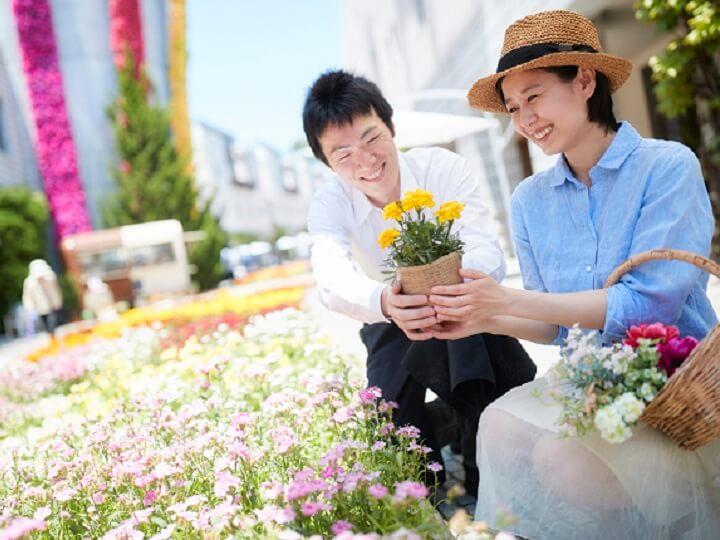 花咲くリゾナーレ 八ヶ岳 色鮮やかな花
