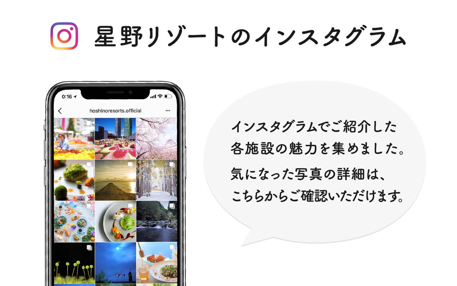 インスタグラム紹介コンテンツ