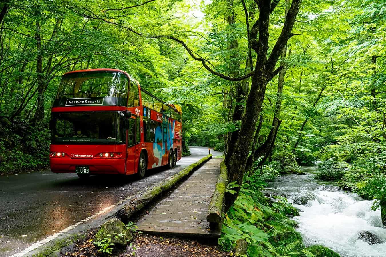 【奥入瀬渓流ホテル】7月22日より、オープントップバスが奥入瀬渓流の試験走行を開始しました!